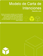 Carta de intenciones (letter of intent)